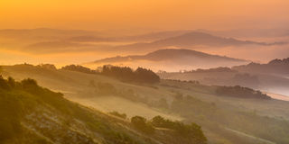 Rolling hill Landscape in Tuscany Stock Photography