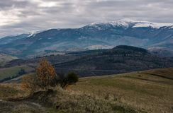 Rolling hill with mountain ridge in late autumn. Beautiful scenery with snowy tops of high mountain ridge in a distance Stock Photo