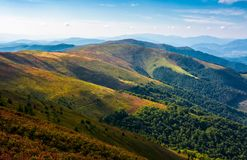 Rolling hill of mountain ridge in late summer. Rolling hills of mountain ridge in late summer afternoon. colorful grassy carped of beautiful alpine scenery Royalty Free Stock Image