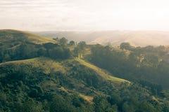 Rolling Hills на восходе солнца Стоковое Изображение