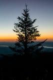 Rolling Hills осенью Стоковое Фото