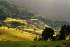 Rolling Hills. Sun bathed rolling hills at the base of mountains at sunset Stock Photos