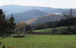 Rolling Hills Fotografia de Stock