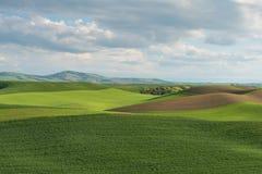 Rolling Hills imagem de stock royalty free