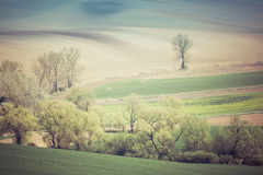 Rolling Hills Стоковая Фотография RF