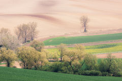 Rolling Hills Стоковые Изображения RF