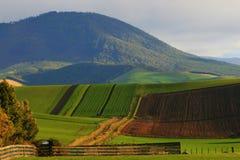 rolling hills Obraz Royalty Free
