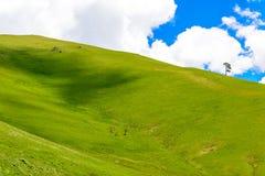Rolling Hills Lizenzfreies Stockbild