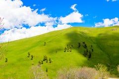 Rolling Hills Lizenzfreies Stockfoto