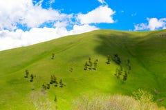 Rolling Hills Stockfotografie