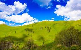 Rolling Hills Stockfoto