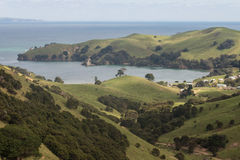 Rolling hills above Colville Bay in Coromandel Stock Photo