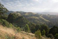 Rolling Hills ad alba Fotografie Stock