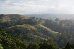 Rolling Hills ad alba Fotografia Stock
