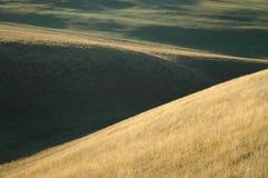 Rolling Hills all'alba Fotografia Stock