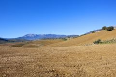 Mountains and arable farmland of Andalucia. Rolling hills in andalucia spain with plowed fields and scenery under a blue sky Stock Photography
