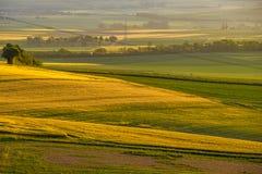 Rolling Hills auf Sonnenuntergang Landwirtschaftliche Landschaft Grünfelder und Ackerland, neue vibrierende Farben Lizenzfreie Stockbilder