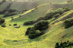 Rolling hills at Batan island in Batanes, Philippines - Series 2 Stock Photos
