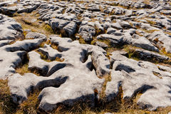 The rolling hills of Burren. Are composed of limestone pavements with criss-crossing cracks known as grikes, leaving isolated rocks called clints. The region Royalty Free Stock Photos