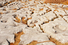 The rolling hills of Burren. Are composed of limestone pavements with criss-crossing cracks known as grikes, leaving  rocks called clints. The region supports Royalty Free Stock Images