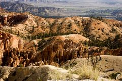 Rolling hills and colors in Bryce Canyon. Many rolling hills and colors in Bryce Canyon National Park stock images