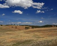 Rolling hills of Custer State Park. Rolling hills of grasslands and timber in Custer State Park in western South Dakota Royalty Free Stock Photos
