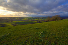 Rolling Hills dans Dorset Photos stock