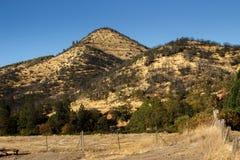 Rolling Hills de oro Imágenes de archivo libres de regalías