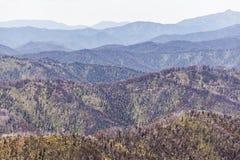 Rolling Hills delle alpi australiane il giorno di estate luminoso, Victoria, Australia Fotografie Stock