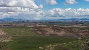 Rolling Hills des Palouse Stockbilder
