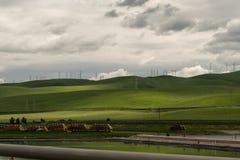 Rolling Hills di California del Nord Fotografia Stock Libera da Diritti