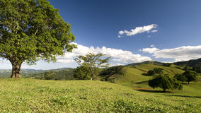 Rolling Hills of the Dominican Stock Image