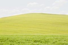 Rolling Hills in dOrcia di Val Fotografia Stock