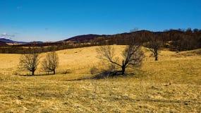 Rolling Hills en vallée bleue d'herbe photographie stock libre de droits