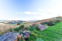 The rolling hills and fertile valleys of the Dargle, Kwazulu-natal, South Africa. The rolling hills and fertile valleys of the Dargle on a fresh winter afternoon royalty free stock photo