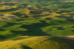 Rolling hills and fields Stock Photos
