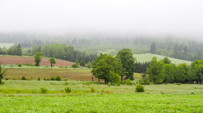 Rolling hills, fields and meadows under foggy low cloud cover,  Greenwood, Nova Scotia. Stock Image