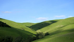 Rolling Hills. Green Rolling hills with blue sky in Australia Stock Photography
