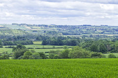 Rolling hills with green fields, rural villages, woodlands Royalty Free Stock Photos