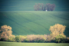 Rolling hills and green grass fields Royalty Free Stock Photo