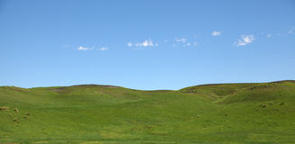 Rolling Hills. Green rolling hills under a blue sky stock photography