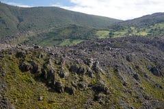 Rolling Hills i Antisana den ekologiska reserven Arkivfoton
