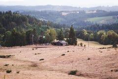 Rolling Hills i det Oregon lantgårdlandet Arkivbild