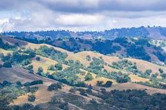 Rolling Hills i det södra San Francisco Bay området, San Jose, Kalifornien royaltyfri fotografi