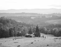 Rolling Hills i det svartvita Oregon lantgårdlandet Fotografering för Bildbyråer