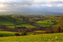 Rolling Hills i Dorset Royaltyfri Bild