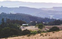 Rolling Hills i lantgårdland Arkivfoto