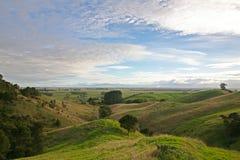 Rolling Hills i Nya Zeeland Royaltyfria Foton