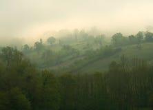 Rolling Hills im Nebel Stockfotografie