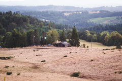 Rolling Hills im Oregon-Ackerland Stockfotografie
